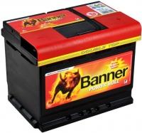 Аккумулятор Banner Power Bull 60 низкий
