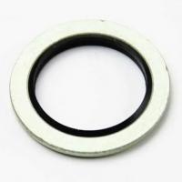 Уплотнительное кольцо 703376900 REINZ